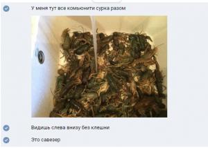 Фотография eblosya.